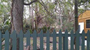Fence-300x169